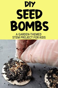Steam Activities, Fun Activities For Kids, Stem Projects For Kids, Seed Bombs, Practical Life, Nature Study, Work From Home Moms, Earth Day, Raising Kids