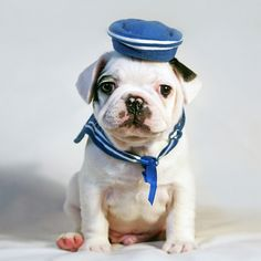 jaunty hat!