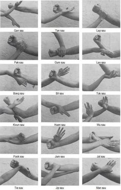 Wing Chun kung fu hands - For Scene Analysis of Ip Man Wing Chun Martial Arts, Kung Fu Martial Arts, Martial Arts Workout, Chinese Martial Arts, Boxing Workout, Mixed Martial Arts Training, Aikido Martial Arts, Martial Arts Quotes, Bruce Lee Martial Arts