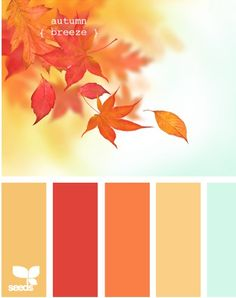 Love the mix of warm and minty cool.  What a great Fall color combo!