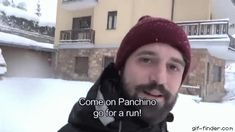 Why chihuahuas don't run on the snow   Gif Finder – Find and Share funny animated gifs