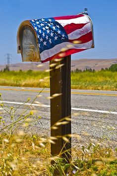 Patriotic Mailbox  by ~1985LUKE~ on Flickr.  This photo was taken on May 20, 2008 using a Nikon D80.