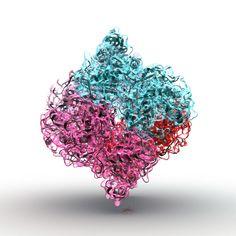Unblutige Insulinmessgeräte, Gliptine und Gliflozine als Hoffnungsträger in der Therapie Diabetes, Sprinkles, Candy, Sugar, Health, Sweet, Toffee, Candy Notes, Candles