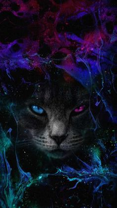 Blacl Cat Art IPhone Wallpaper - IPhone Wallpapers