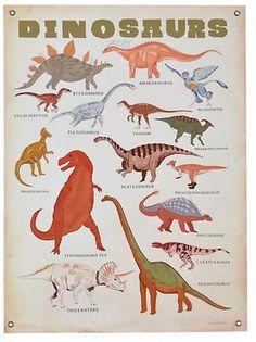 Dinosaur print Banner