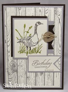 Stampin' Sarah!: Wetlands Birthday Greetings