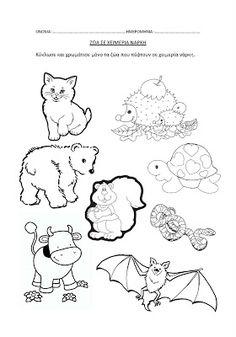 dreamskindergarten Το νηπιαγωγείο που ονειρεύομαι !: Τα ζώα σε χειμερία νάρκη - Πίνακες αναφοράς για το νηπιαγωγείο