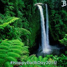 #HappyEarthDay2015! http://bit.ly/1yRb0Vk