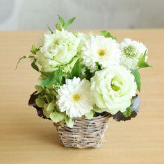 ガーベラ(白)のメモリアルアレンジメント(お供え用) | 花・花束の通販|青山フラワーマーケット