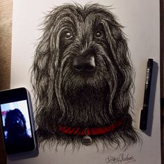 """""""Finished  Really hope he's owners will be pleased with it  #labradoodle #dogportrait #dogportraits #dogart #doglove #doglover #dogscorner #dogdrawings…"""""""