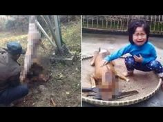 Heartbreaking moment little girl finds her missing dog roasted and ready for sale - YouTube