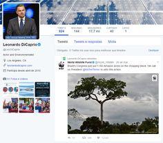 Leonardo DiCaprio se envolve em causa ambiental do WWF-Brasil