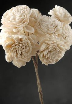FIVE DOLLARS PER BOUQUET…I think I may just go ahead and get these. They're wood, so could wash them with a pink tint for color. This is way cheaper than buying felt, wire, floral tape and bandaids. Sola Flowers 2 on wire stems (10 flowers) $5