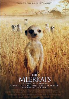[VOIR-FILM]] Regarder Gratuitement The Meerkats VFHD - Full Film. The Meerkats Film complet vf, The Meerkats Streaming Complet vostfr, The Meerkats Film en entier Français Streaming VF Buy Movies, Movies 2019, Movies To Watch, Movies Online, Popular Movies, Latest Movies, March Of The Penguins, Nature Film, Walking With Dinosaurs