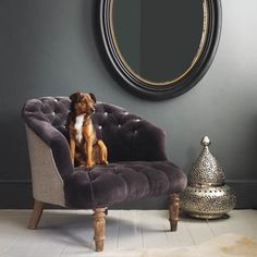Paint Ideas - The dark would look nice along the wall that divides the bathroom and bedroom and a hint of purple would work best in the living room. Keeps the drapes in place. ;-)
