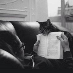 """Why is you're full attention no longer riveted on me, human? What is this thing you call """"reading?"""""""