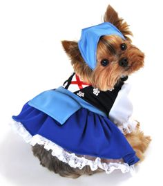 Two piece Gretchen beer maiden Oktoberfest dog costume, includes black  corset top with flower appliques, blue apron dress with attached lace  petticoat.