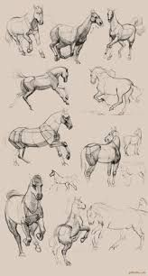 Hottest Pics horse drawing tutorial Popular : Learn how to draw with these tutorials, which teach you to draw animals, people, flowers, landscapes and more. In the event working out lure is one ar. Horse Drawings, Animal Drawings, Art Drawings, Drawing Art, Animal Sketches, Art Sketches, Arte Equina, Horse Anatomy, Animal Anatomy