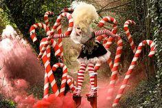 Wonderland by Kirsty Mitchell | DeMilked