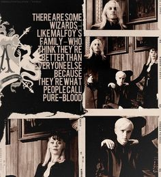 The Malfoys - I really don't know why I like them so much.