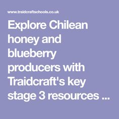 Explore Chilean honey and blueberry producers with Traidcraft's key stage 3 resources covering all curriculum subjects!