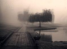 "Saatchi Art Artist James Arzente; Photography, ""Fog Series, Tamo #1 Day #1"" #art"