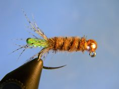 Show Me State Fly Fishing: Cased Caddis SBS