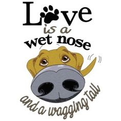 Machine Embroidery Patterns Dakota Collectibles Free Embroidery Design: Love Is A Wet Nose inches H x inches W - I Love Dogs, Puppy Love, Big Dogs, Dogs And Puppies, Doggies, Mouille, Free Machine Embroidery Designs, Machine Applique, Dog Rules