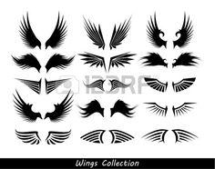 las alas de la colección (conjunto de alas) Foto de archivo