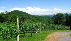 Ankida Ridge Vineyards - Amherst, VA www.ankidaridge.com