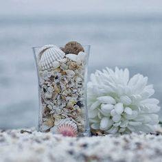 A alma é um grande mar que vai depositando conchinhas no pensamento!...(rubem alves)