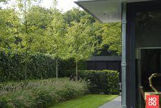 Anne Laansma - Royale tredes en speelse hoogteverschillen - Hoog ■ Exclusieve woon- en tuin inspiratie.