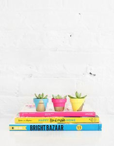 Tiny Neon Pots | I SPY DIY