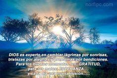 Dios nos cambia las lágrimas por sonrisas, tristezas por alegrías y problemas por bendiciones.