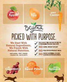 Purina Beyond Pet Food #spon