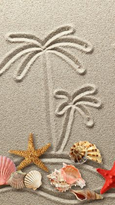 Drawing figure sand starfish texture sand seashells - Tap to see more Wallpapers for to brighten up your phone - Summer Wallpaper, Beach Wallpaper, Cute Wallpapers, Wallpaper Backgrounds, Summer Backgrounds, Iphone Wallpapers, Pretty Backgrounds, Wallpaper Ideas, Photo Backgrounds