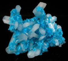 Mineral:Cavansite with Stilbite-Ca Locality:Wagholi Quarry, Maharashtra, India Description:Thin crust-like formation of bright blue cavansite crystals up to 3 mm intergrown with colorless stilbite crystals up to 15 mm. When viewed on edge it can be seen that the cavansite is bonding all the stilbite crystals together. / Mineral Friends