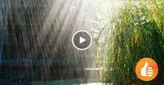 Невероятный эффект дождя в выступлении хора. Мурашки по коже!