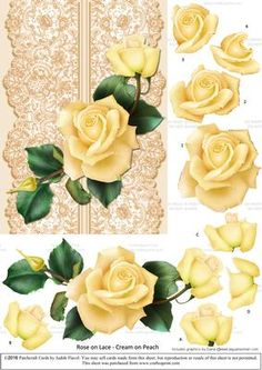 Roses on Lace - Cream on Peach by Judith Flavel Beautiful roses and lace combine to make a really lovely card front with roses to cut out and layer for added effect.   This design comes in eleven different colourways -  cream roses on cream, pink, peach or blue lace;  peach roses on cream or peach lace;  deep pink roses on cream or pink lace;  pale pink roses on cream, blue or pink lace.  There are 6 different sentiments to choose from too - Happy Birthday, Happy Anniversary, Happy Mother?s…