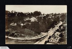 NAPIER Coote Road Annand's postcard | Trade Me