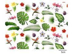 画像1: TROPICAL PLANTS(L)