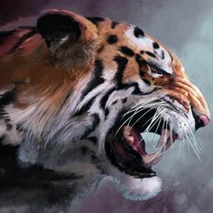 Lions Tigers and Apes is a single by Jake Chudnow from the 2012 album Glow in the Dark Treasure Hunt. Tier Wallpaper, Animal Wallpaper, Girl Face Tattoo, Minecraft Pictures, Tiger Drawing, Tiger Love, Cute Tigers, Airbrush Art, Tigers