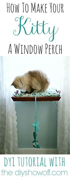 23 DIY Pet Projects