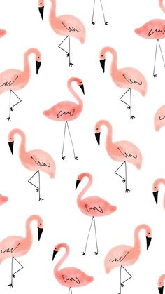 Flamingos Wallpapers for whatsapp - Hintergrundbilder iphone - Cartoon Wallpaper, Wallpaper Pastel, Flamingo Wallpaper, Cute Patterns Wallpaper, Iphone Background Wallpaper, Galaxy Wallpaper, Aesthetic Iphone Wallpaper, Iphone Backgrounds, Disney Wallpaper
