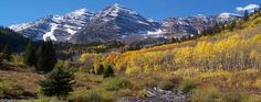 Independence Pass Colorado (near Aspen)... worth the visit!