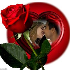 We love the things we love for what they are. Love Art Images, Dove Images, I Love You Pictures, Love You Gif, Beautiful Romantic Pictures, Love Wallpapers Romantic, Romantic Love Messages, Beautiful Roses, Night Love