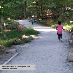 Hiking With Kids at Cunningham Falls in Frederick Maryland -...