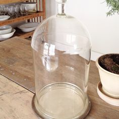 huge scientific bell jar