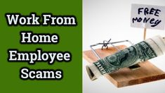 How To Avoid Work From Home Employee Scams Make Money Online, How To Make Money, Start Online Business, Extra Money, Watch, Learning, Simple, Videos, Hotels