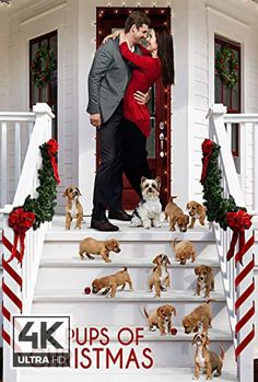 Watch 12 Pups of Christmas on free. Christmas Movies, Christmas 2019, Christmas Poster, Holiday Movie, Free Movie Downloads, Camera Shots, Ex Machina, About Time Movie, Watches Online